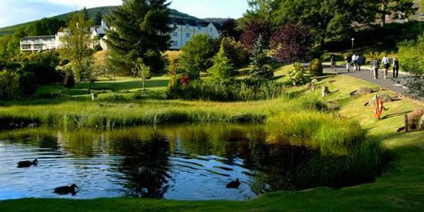 Macdeonald Hotel Forest Hills