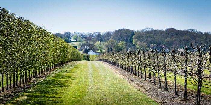 hushheath winery romantic place