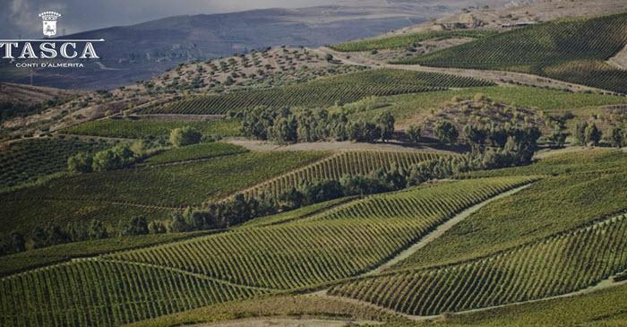 sicily tasca winery